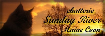 Chatterie SUNDAY RIVER